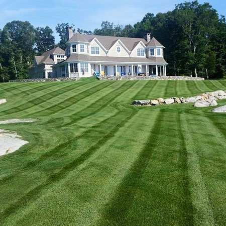 Lawn Care Image Gallery See Expert Work Safe Lawn Of Salem