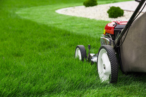 salem lawn care and Irrigation services timely tips - may - lawn mow